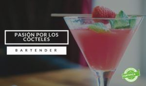 curso barman madrid