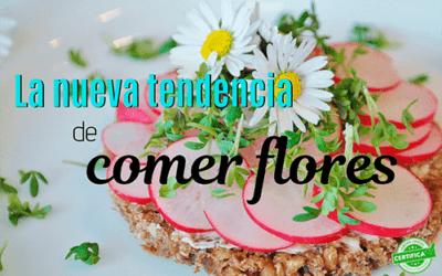 Las flores comestibles, el nuevo secreto de la cocina moderna