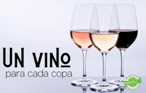tipos de copas de vino