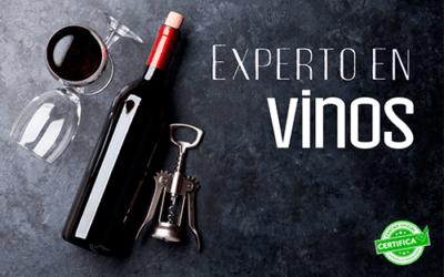Aprende a distinguir las etiquetas de los vinos